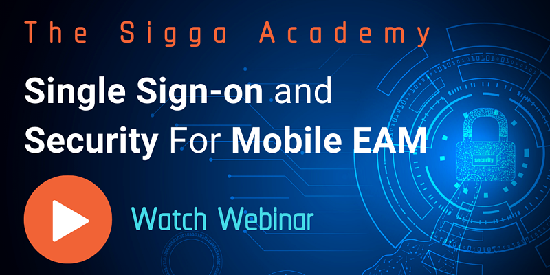 The Sigga Academy - Single Sign-on and Security for Mobile EAM